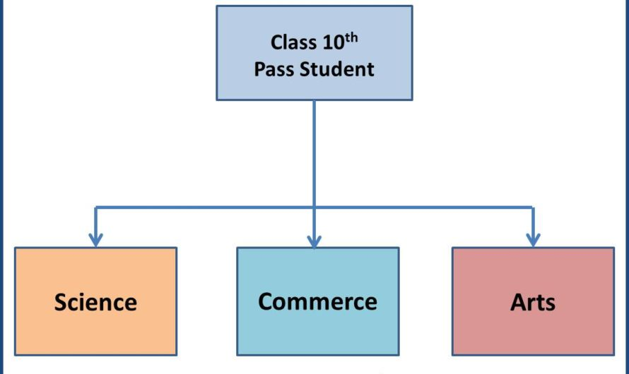 Career Guide for 10th Pass Student